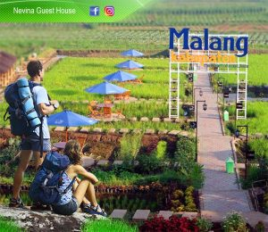 Nevina Guest House Malang 2020